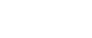 Maestro Technology Industry